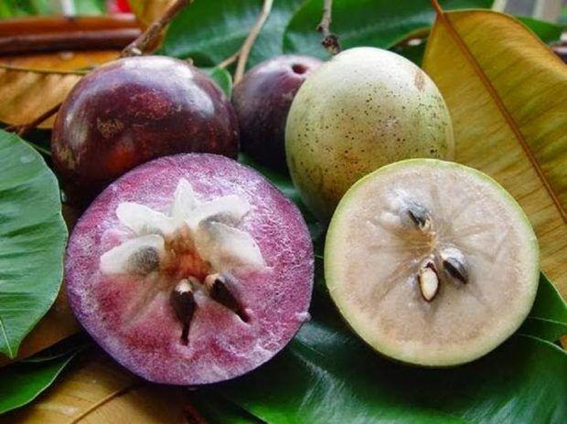 exotic fruits vietnam